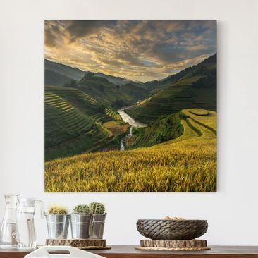 Produktfoto Leinwandbild - Reisplantagen in Vietnam...