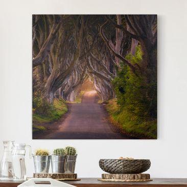 Produktfoto Leinwandbild - Tunnel aus Bäumen - Quadrat 1:1, vergrößerte Ansicht in Wohnambiente, Artikelnummer 212155-XWA