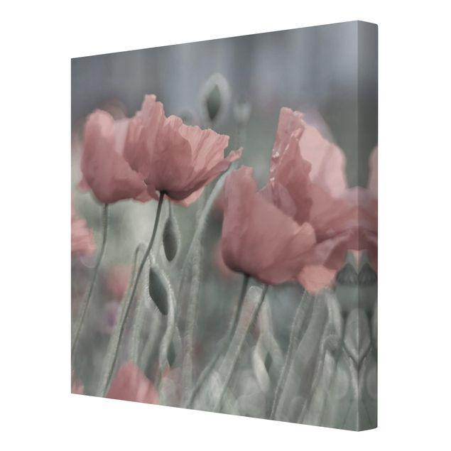 Produktfoto Leinwandbild - Malerische Mohnblumen - Quadrat 1:1, Spiegelkantendruck rechts, Artikelnummer 212225-FR