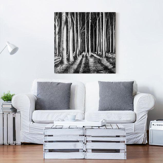 Produktfoto Leinwandbild - Geisterwald - Quadrat 1:1