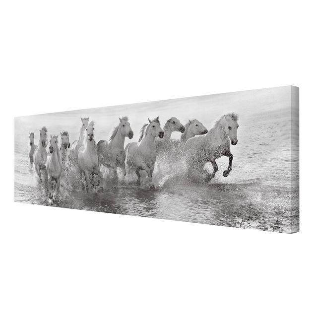 Produktfoto Leinwandbild - Weiße Pferde im Meer - Panorama Quer, Spiegelkantendruck rechts, Artikelnummer 212477-FR
