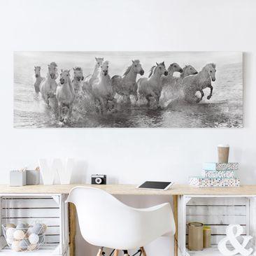 Produktfoto Leinwandbild - Weiße Pferde im Meer - Panorama Quer, vergrößerte Ansicht in Wohnambiente, Artikelnummer 212477-XWA