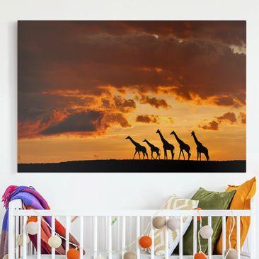 Produktfoto Leinwandbild - Fünf Giraffen - Quer 2:3, vergrößerte Ansicht in Wohnambiente, Artikelnummer 212665-XWA