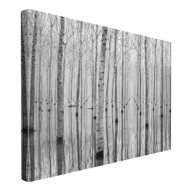 Produktfoto Leinwandbild - Birken im November - Quer 2:3, Spiegelkantendruck links, Artikelnummer 212680-FL