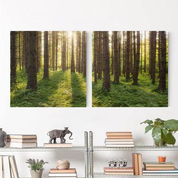 Produktfoto Leinwandbild 2-teilig - Sonnenstrahlen in grünem Wald - Quadrate 1:1, vergrößerte Ansicht in Wohnambiente, Artikelnummer 212902-XWA
