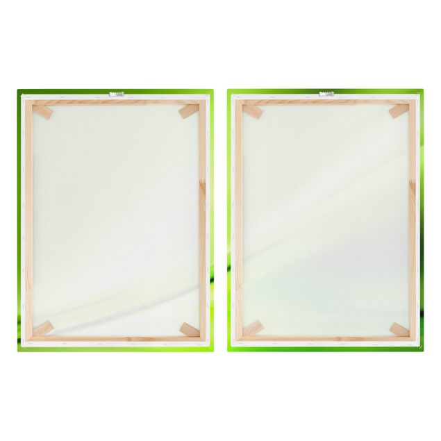 Produktfoto Leinwandbild 2-teilig - Green Valley - Hoch 4:3, Spiegelkantendruck rechts, Artikelnummer 212924-FR