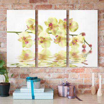 Produktfoto Leinwandbild 3-teilig - Dreamy Orchid Waters - Hoch 2:1, vergrößerte Ansicht in Wohnambiente, Artikelnummer 213065-XWA