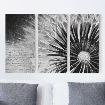 Produktfoto Leinwandbild 3-teilig - Pusteblume Schwarz & Weiß - Hoch 2:1, vergrößerte Ansicht in Wohnambiente, Artikelnummer 213152-XWA