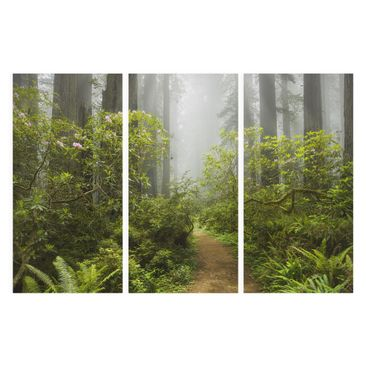 Product picture Canvas Art Three-part - Misty Forest...