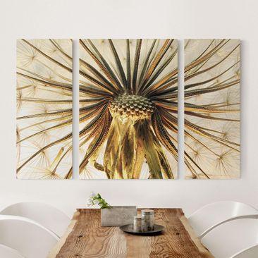 Produktfoto Leinwandbild 3-teilig - Dandelion Close Up - Triptychon, vergrößerte Ansicht in Wohnambiente, Artikelnummer 213272-XWA