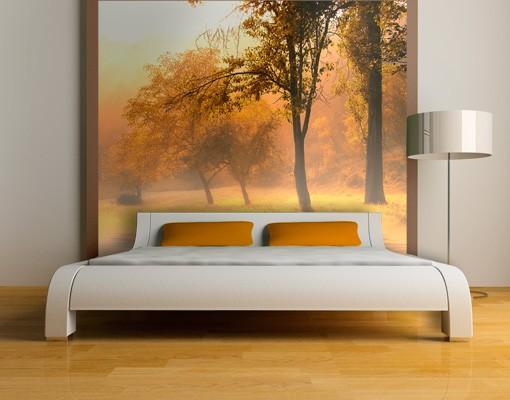 Fototapete Wald - Herbstmorgen -...