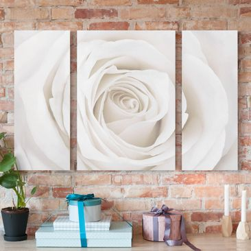 Product picture Canvas Art Three-part - Pretty White...
