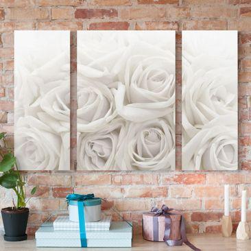 Produktfoto Leinwandbild 3-teilig - Weiße Rosen - Triptychon, vergrößerte Ansicht in Wohnambiente, Artikelnummer 213407-XWA