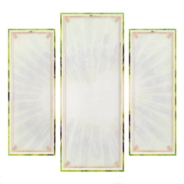 Produktfoto Leinwandbild 3-teilig - Kiwi Heart - Galerie Triptychon, Spiegelkantendruck rechts, Artikelnummer 213498-FR