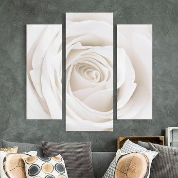 Produktfoto Leinwandbild 3-teilig - Pretty White Rose - Galerie Triptychon, vergrößerte Ansicht in Wohnambiente, Artikelnummer 213519-XWA