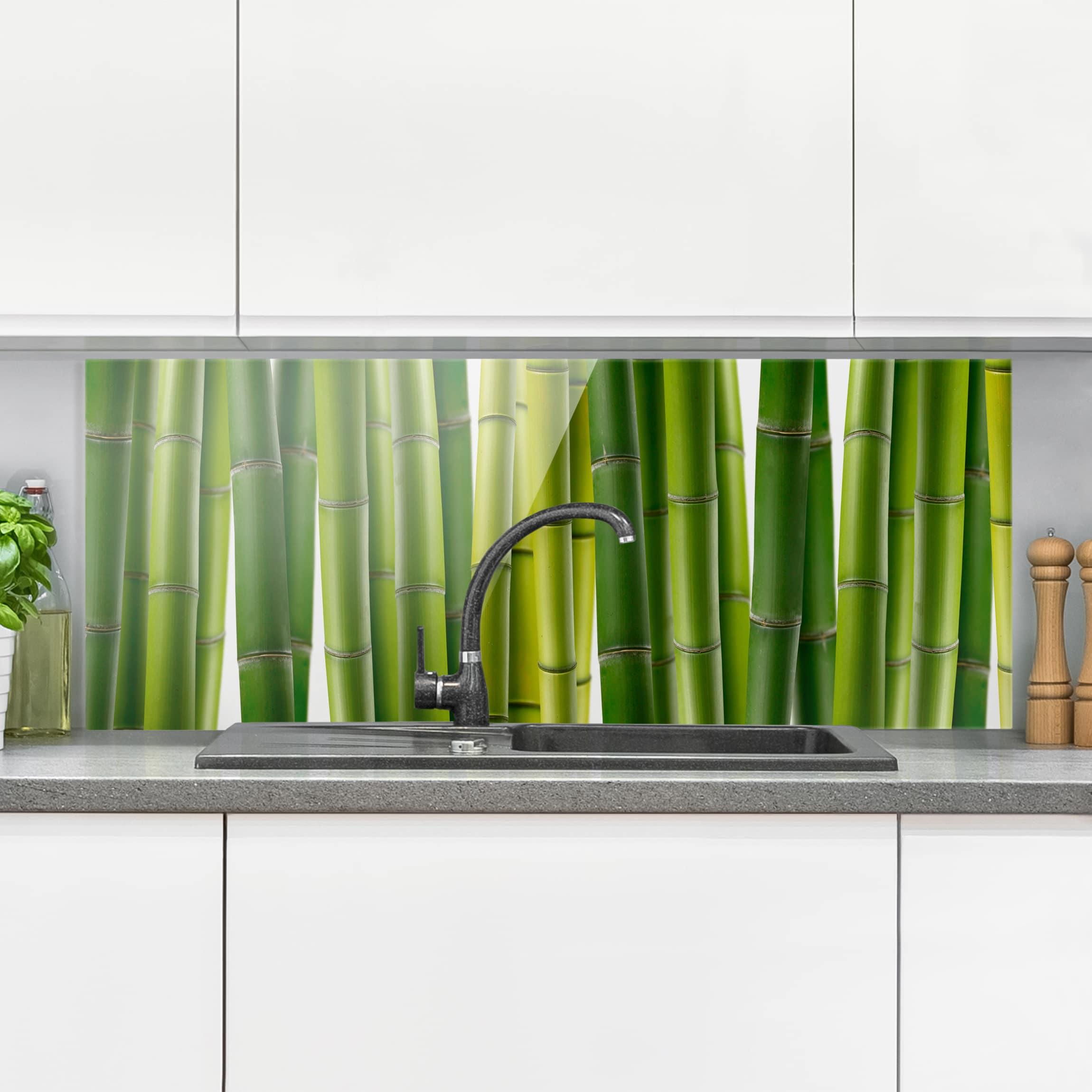 Spritzschutz glas bambuspflanzen panorama quer for Spritzschutz glas