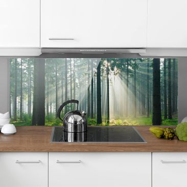 Produktfoto Spritzschutz Glas - Enlightened Forest - Panorama Quer