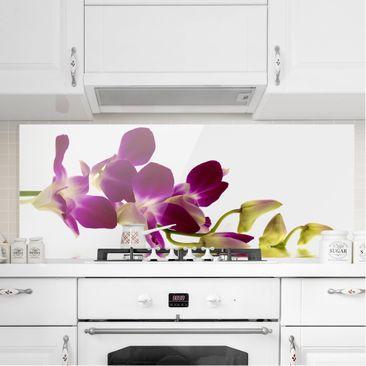 Produktfoto Spritzschutz Glas - Pink Orchid Waters - Panorama Quer