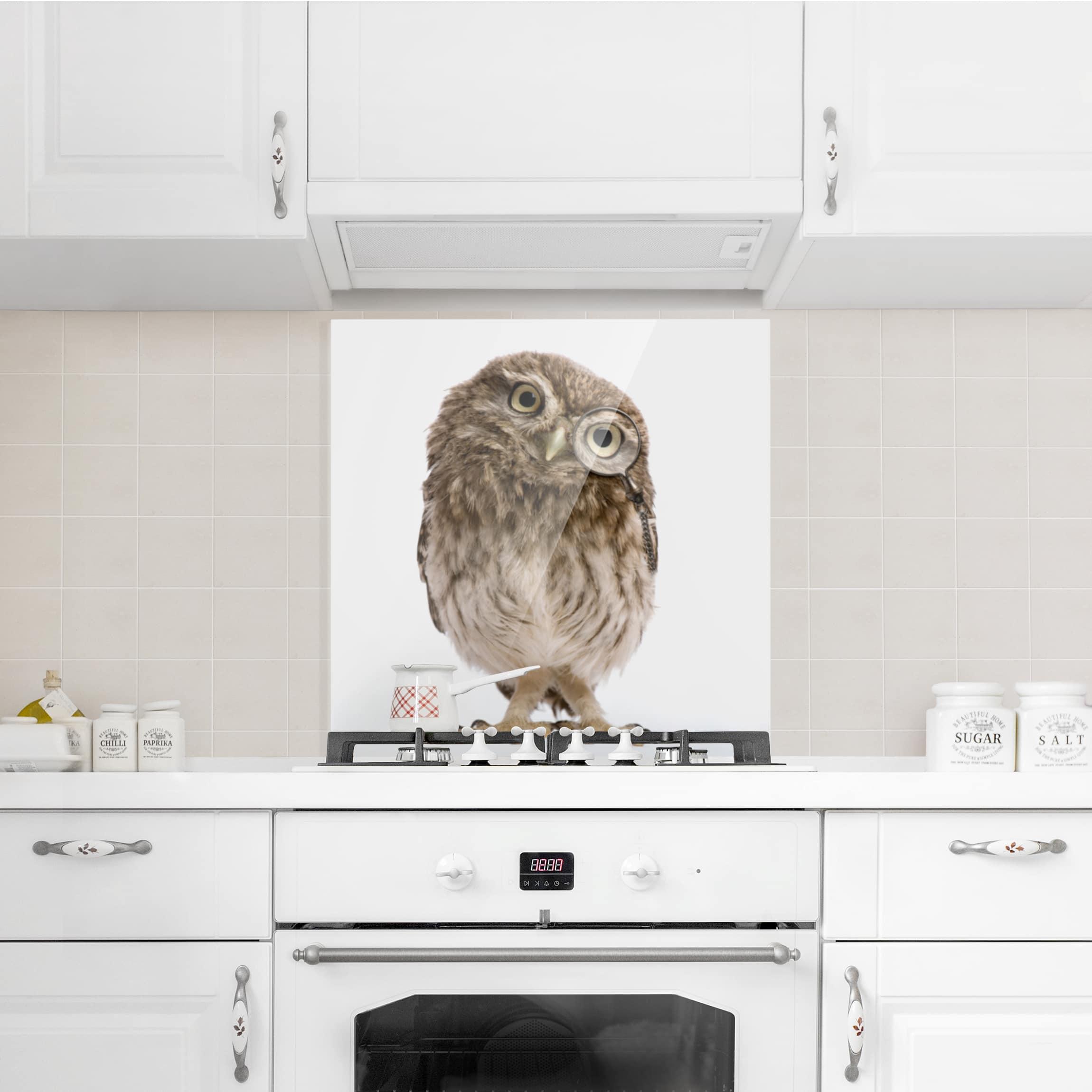 spritzschutz glas neugierige eule quadrat 1 1. Black Bedroom Furniture Sets. Home Design Ideas