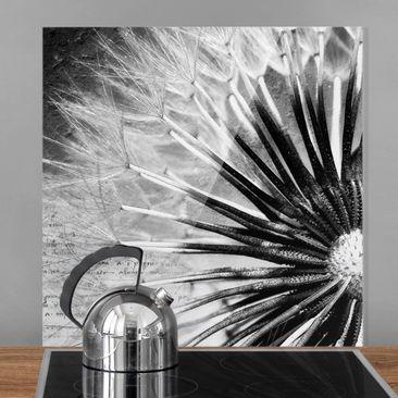 Produktfoto Spritzschutz Glas - Pusteblume Schwarz & Weiß - Quadrat 1:1