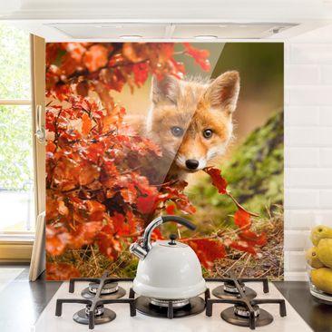 Immagine del prodotto Paraschizzi in vetro - Fox in Autunno - Quadrato 1:1