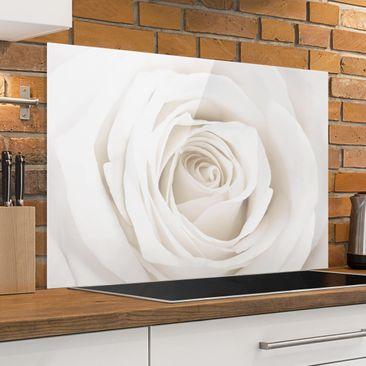 Produktfoto Spritzschutz Glas - Pretty White Rose - Quer 2:3