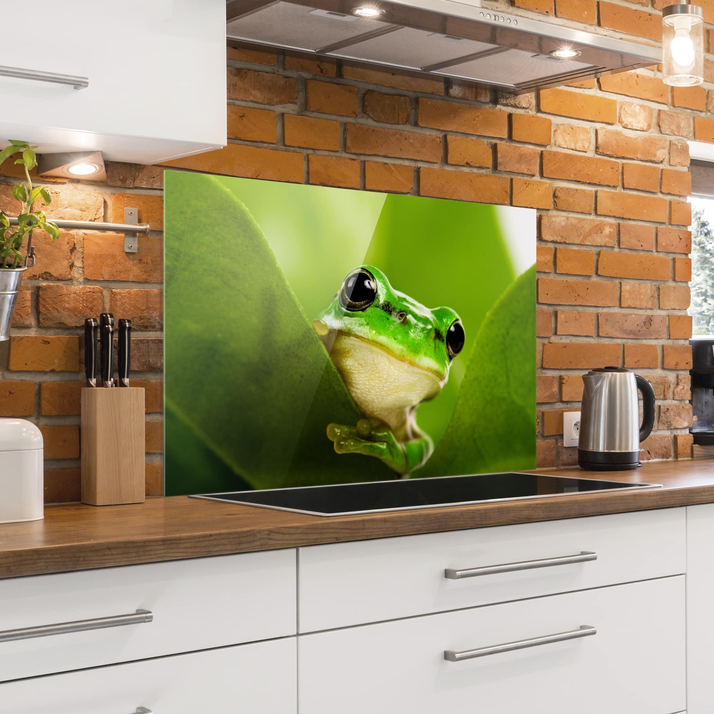 spritzschutz glas wetterfrosch quer 2 3. Black Bedroom Furniture Sets. Home Design Ideas