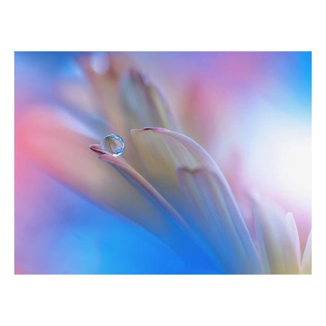 Produktfoto Spritzschutz Glas - Touch Me Softly - Quer 3:4