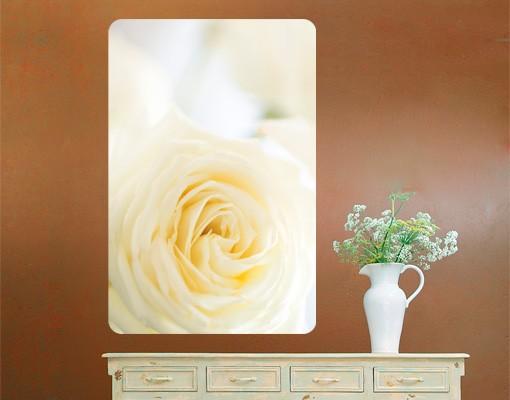 Produktfoto Selbstklebendes Wandbild White Rose