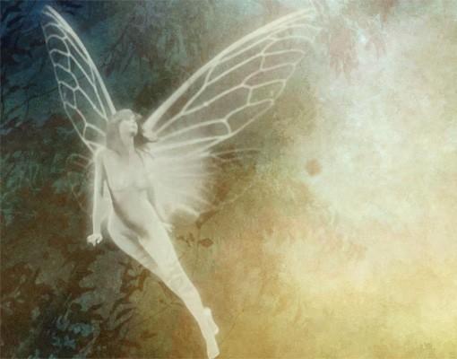 Produktfoto Selbstklebendes Wandbild Night of the Fairies