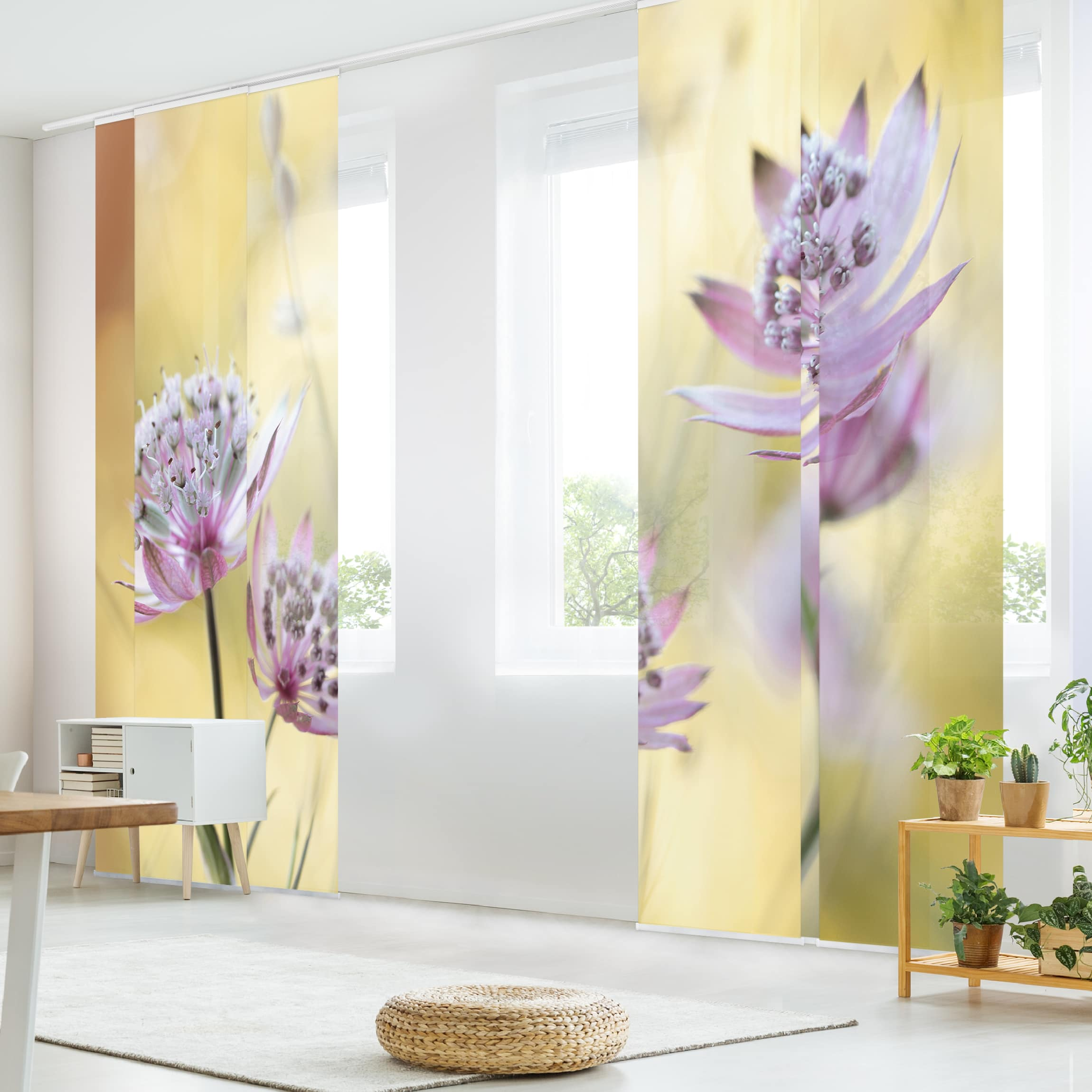 schiebegardinen set astrantia major 6 fl chenvorh nge. Black Bedroom Furniture Sets. Home Design Ideas