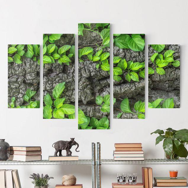 Produktfoto Leinwandbild 5-teilig - Efeuranken Baumrinde, vergrößerte Ansicht in Wohnambiente, Artikelnummer 216076-XWA