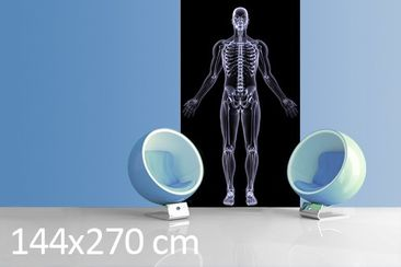 Product picture Photo Wall Mural Human X-ray 144x270cm