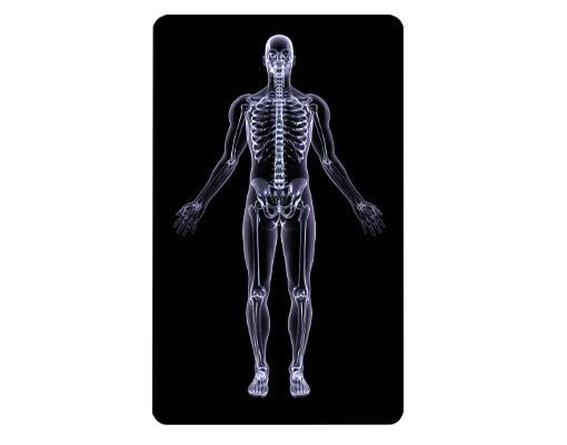 Produktfoto Selbstklebendes Wandbild Röntgenmensch