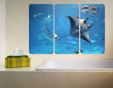 Produktfoto Selbstklebendes Wandbild Manta Ray Triptychon