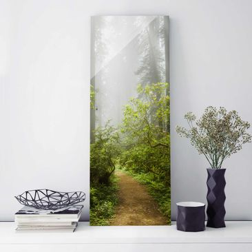 Produktfoto Glasbild - Nebliger Waldpfad - Panorama Hoch