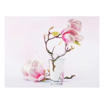 Product picture Print on Glass - Magnolia in glass -...