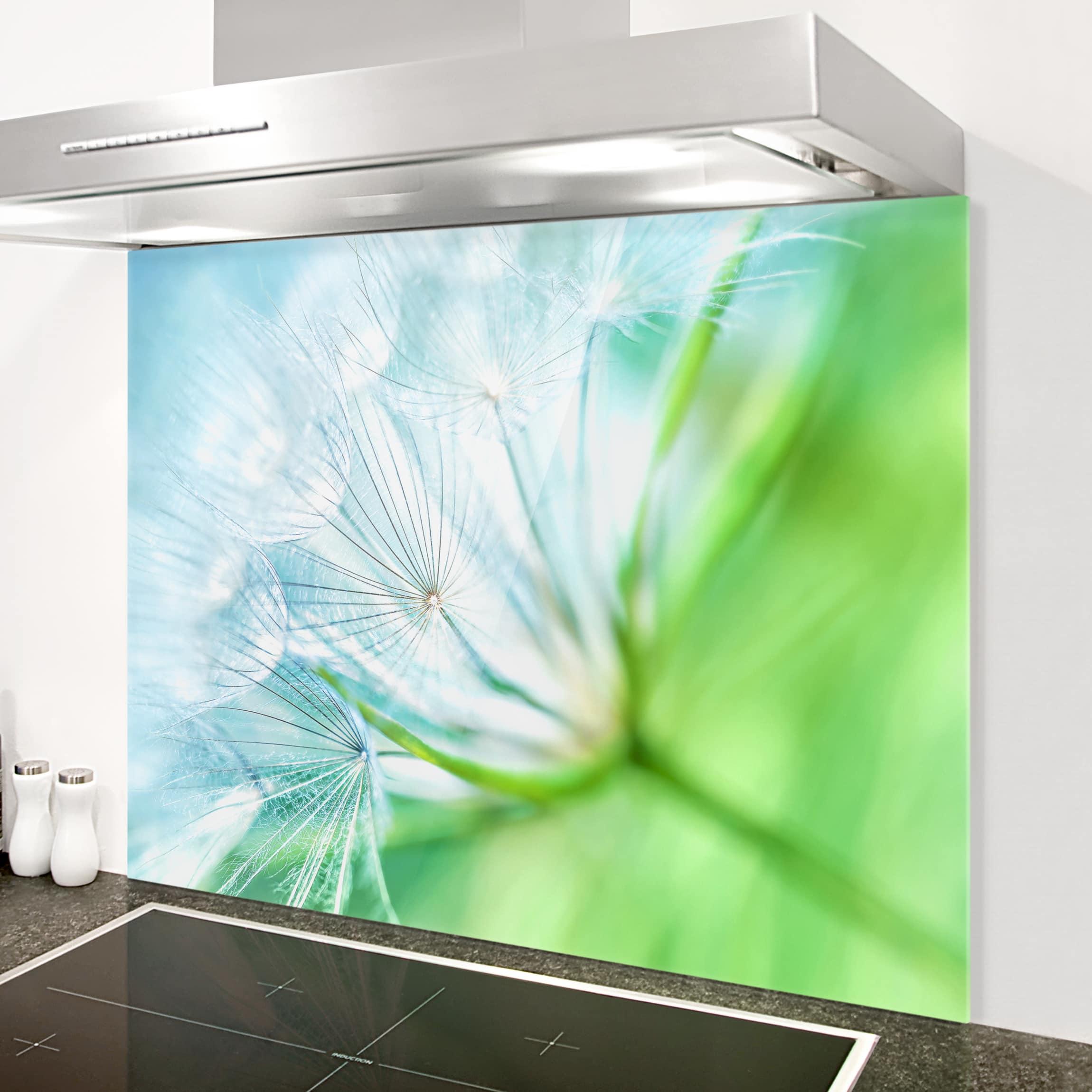 spritzschutz glas abstrakte pusteblume quer 3 4. Black Bedroom Furniture Sets. Home Design Ideas