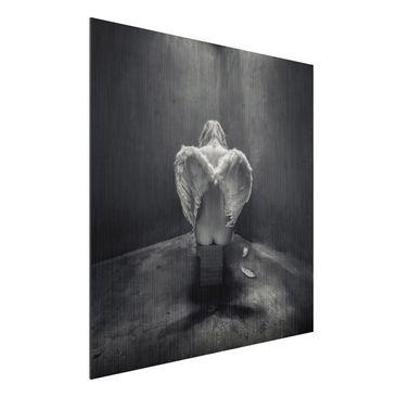 Produktfoto Aluminium Print gebürstet - Busted -...