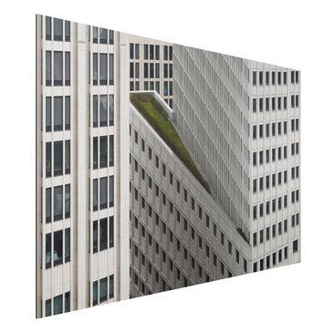 Produktfoto Aluminium Print gebürstet - Das grüne...
