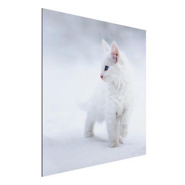 Immagine del prodotto Stampa su alluminio - White As Snow - Quadrato 1:1