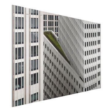 Produktfoto Aluminium Print - Das grüne Element - Querformat 2:3