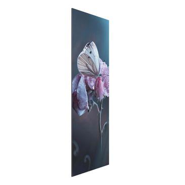 Produktfoto Aluminium Print - Schmetterling im Regen - Panorama Hochformat