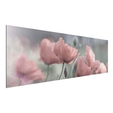 Produktfoto Aluminium Print - Malerische Mohnblumen...