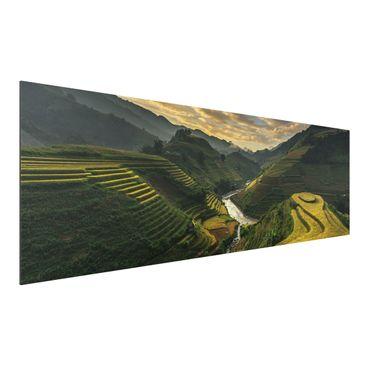 Produktfoto Aluminium Print - Reisplantagen in Vietnam - Panorama Querformat