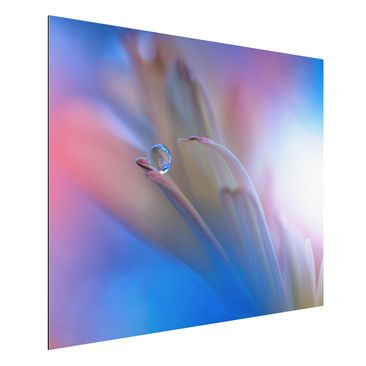 Produktfoto Aluminium Print - Touch Me Softly - Querformat 3:4