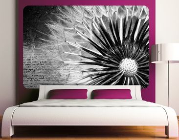 Product picture Wall Mural Black & White Dandelion