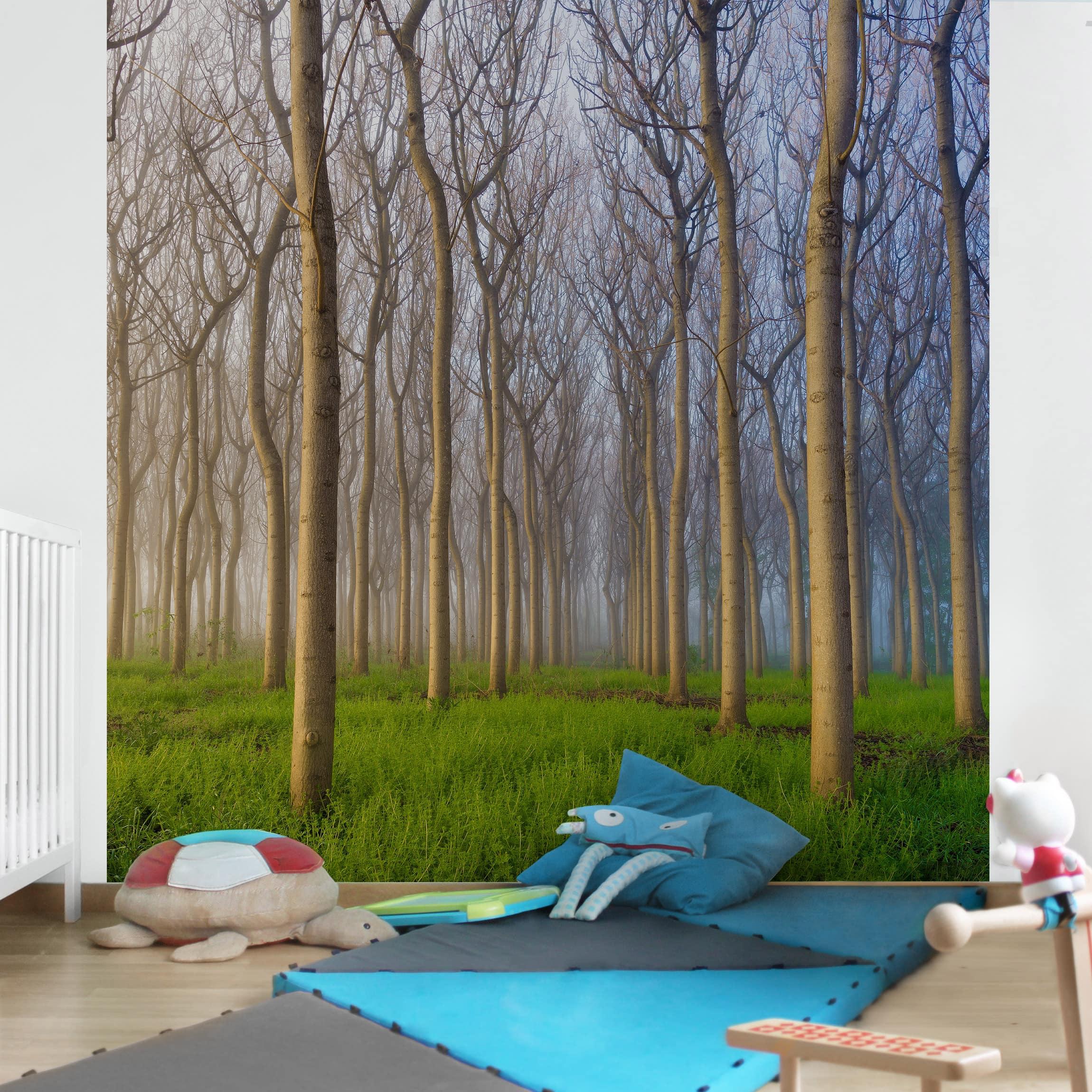 tapete selbstklebend morgen im wald wandbild quadratisch. Black Bedroom Furniture Sets. Home Design Ideas