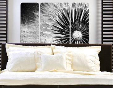 Product picture Wall Mural Black & White Dandelion...