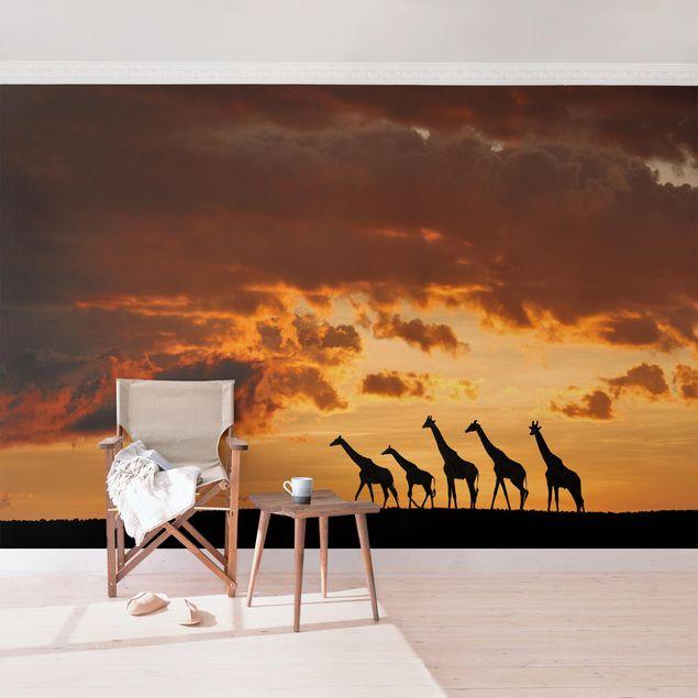 Produktfoto Tapete selbstklebend - Fünf Giraffen- Wandbild Querformat